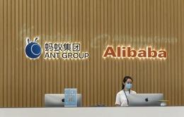 Thương vụ IPO kỷ lục của Ant Group bị đình chỉ