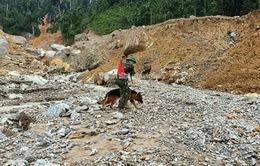 Quân khu 5 mở rộng tìm kiếm nạn nhân tại Trà Leng, hỗ trợ bà con xã Trà Vân