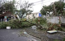 Quảng Nam sơ tán dân ở khu vực nguy hiểm trước 11h ngày 4/11