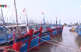 Phú Yên: Cấm biển từ 09h hôm nay 4/11 để ứng phó bão số 10