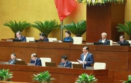 Hôm nay (6/11), Quốc hội tiến hành chất vấn và trả lời chất vấn