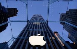 Che giấu doanh thu tồi tệ tại Trung Quốc, Apple có thể bị cổ đông kiện