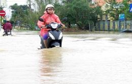 Hơn 800 hộ dân ở thị xã Đức Phổ (Quảng Ngãi) bị nước lũ cô lập