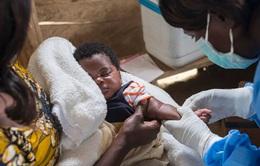 Liên Hợp Quốc: Cần hàng trăm triệu USD để ngăn chặn bùng phát các đợt dịch sởi và bại liệt mới