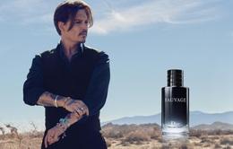 Thua kiện vợ cũ, Johhny Depp mất hợp đồng hàng triệu đô la