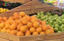 Hà Nội đẩy mạnh liên kết tiêu thụ sản phẩm, thực phẩm an toàn