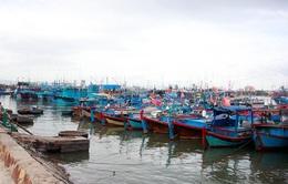 Nam Trung Bộ chủ động ứng phó bão số 12
