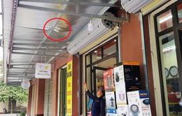 Rơi từ tầng 8 chung cư, bé trai 3 tuổi may mắn thoát chết