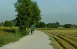 Chuyện chưa kể về con đường đẹp ở Núi Tô, An Giang