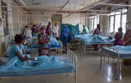 Thuốc trừ sâu là nguyên nhân khiến 600 người mắc bệnh lạ ở Ấn Độ