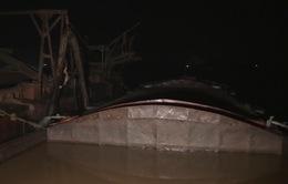 Bắt giữ 10 tàu khai thác và vận chuyển cát trái phép trên sông Hồng