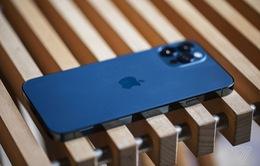 230 triệu chiếc iPhone sẽ được xuất xưởng vào năm 2021