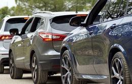 Chuyện lạ: Giữa mùa cao điểm, xe nhập về Việt Nam giảm hàng nghìn chiếc