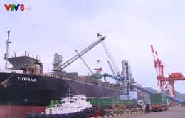 Tháo gỡ khó khăn cho doanh nghiệp trong xuất nhập khẩu