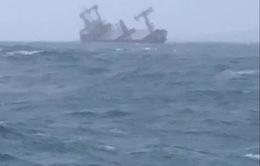 Đã tìm được 11 thuyền viên tàu Xin Hong bị nạn trên biển