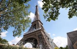 Pháp đấu giá 14 bậc cầu thang Tháp Eiffel