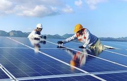 Năm 2020 - năm tăng tốc cho phát triển năng lượng tái tạo