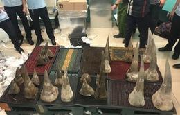 Bắt lô hàng 93kg nghi sừng tê giác trị giá 100 tỉ đồng ở Tân Sơn Nhất