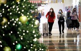 Hơn 84 triệu người Mỹ vẫn đi du lịch Giáng sinh bất chấp cảnh báo dịch bệnh