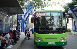 TP Hồ Chí Minh tăng cường xe bus dịp Tết