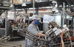 Những kết quả khả quan của chương trình SDP hỗ trợ doanh nghiệp Việt