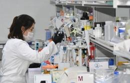 Hàn Quốc đẩy nhanh tiến độ phê duyệt vaccine sau khi có 3 ca nhiễm biến thể mới của virus