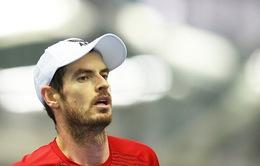 Andy Murray nhận suất đặc cách tham dự Australia mở rộng