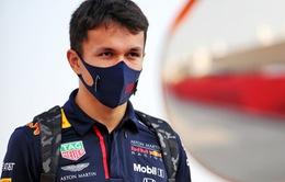 F1: Red Bull sẵn sàng tạo điều kiện để Alexander Albon phát triển