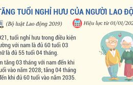 [INFOGRAPHIC] Những chính sách mới nổi bật có hiệu lực vào tháng 1/2021