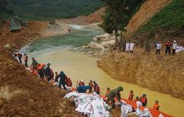 Năm 2020 - Việt Nam gồng sức trước những kỷ lục thiên tai chưa từng xuất hiện