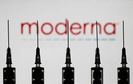 Moderna tự tin sẽ sản xuất 500 triệu liều vaccine COVID-19 trong năm 2021