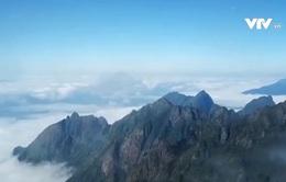 Hiện tượng băng giá trên đỉnh Fansipan