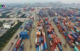 Doanh nghiệp châu Âu lạc quan về phục hồi đầu tư ở Việt Nam