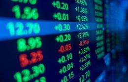 Dòng vốn vào thị trường chứng khoán toàn cầu cao kỷ lục trong tháng 11/2020