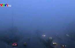 Sương mù dày đặc bao phủ thủ đô Ấn Độ, làm khó người dân