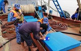 Bắt tàu chở 100.000 lít dầu không có giấy tờ