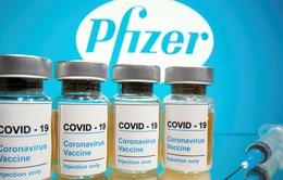 FDA xác nhận vaccine của Pfizer và BioNTech tạo miễn dịch mạnh sau mũi tiêm đầu tiên