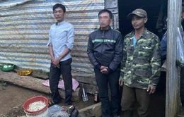 Giải cứu chủ vườn dừa bị bắt cóc đòi 4 tỷ đồng tiền chuộc