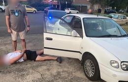 Kỷ lục bắt giữ 137 đối tượng buôn bán ma túy tại Australia