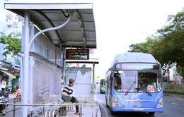 TP Hồ Chí Minh dự kiến mở thêm 20 tuyến xe bus