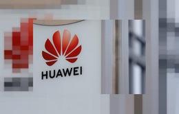 Trung Quốc kêu gọi Pháp không phân biệt đối xử với Huawei trong lĩnh vực 5G