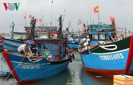 Chống khai thác bất hợp pháp, nâng cao trách nhiệm của ngư dân và doanh nghiệp
