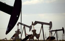 Giá dầu thế giới xuống thấp nhất trong hơn một năm qua
