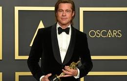 Hậu Oscar, Brad Pitt tạm nghỉ diễn xuất