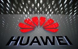 Anh tin tưởng đạt FTA với Mỹ bất chấp bất đồng về vấn đề Huawei