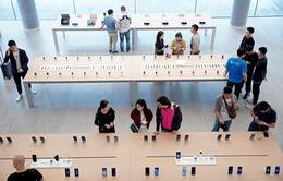 Lượng smartphone bán ra tại Trung Quốc trong quý I có thể giảm 50%