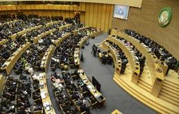 Hội đồng Bảo an LHQ kêu gọi một lệnh ngừng bắn lâu dài tại Libya
