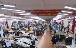 Việt Nam tích cực thực thi cam kết EVFTA