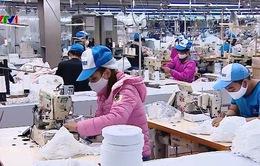 Nhiều nước đặt mua khẩu trang của Việt Nam