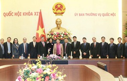 Nâng cao chất lượng ngoại giao phục vụ phát triển